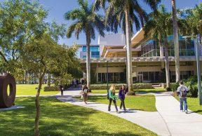 Top 10 Most Popular Majors at University of Miami