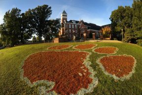 The 10 Most Popular Majors at Clemson University