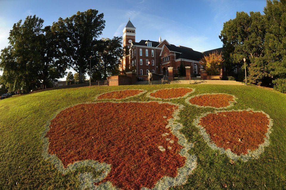 Clemson university office