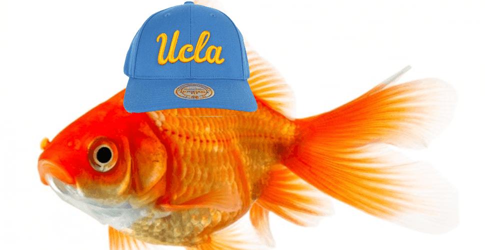 Uclafish