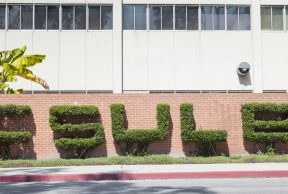 30 Tips to Survive 1st Year at CSULB
