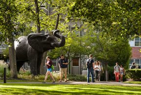 10 Reasons to Skip Class at Tufts University