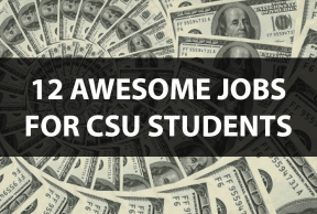 12 Awesome Jobs for Colorado State Students