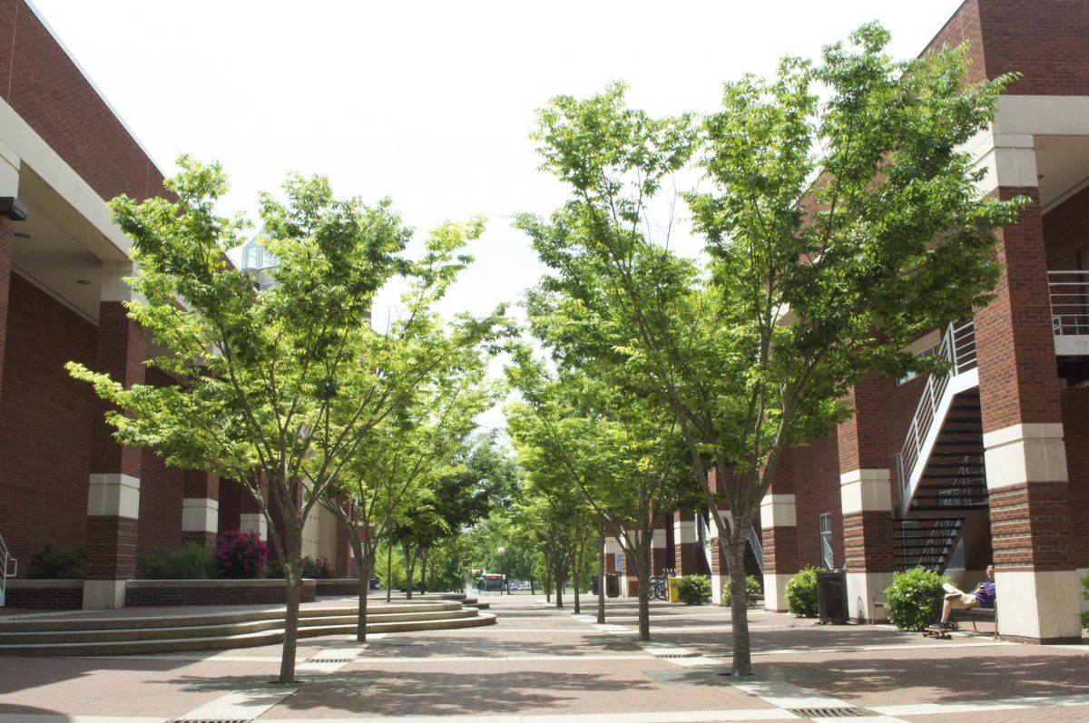 10 of the Easiest Classes at ECU
