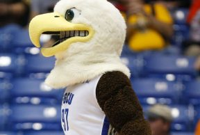 10 Ways To Kick Butt in Your Freshman Year at FGCU