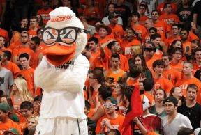 10 of the Coolest Classes at the University of Miami
