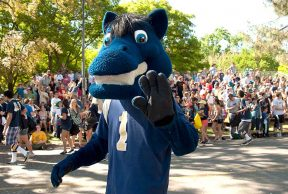 10 Ways To Kick Butt in Your Freshman Year at UC Davis