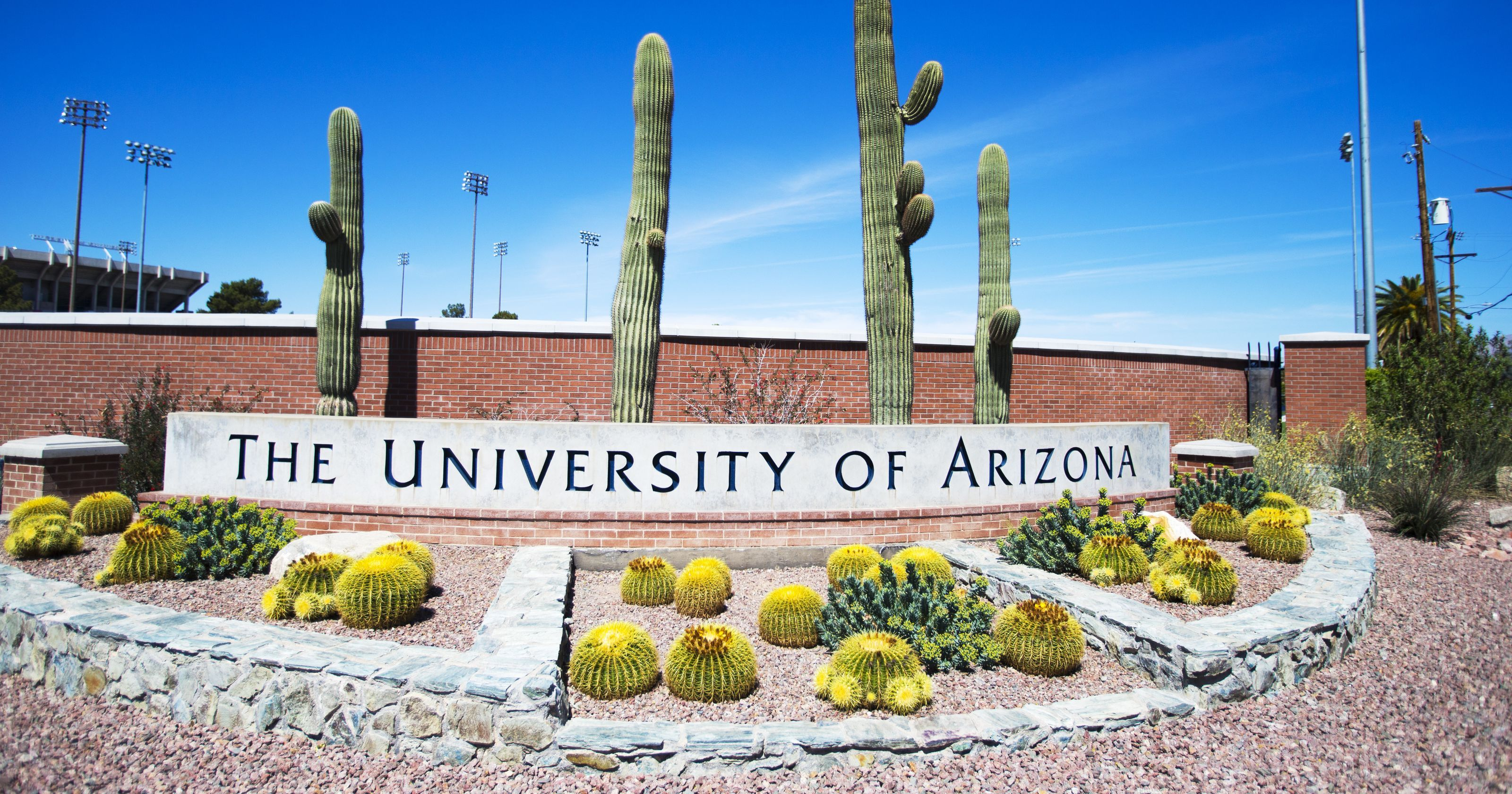 University of arizona 2