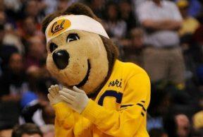 10 Ways To Kick Butt in Your Freshman Year at University of California Berkeley