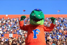 10 Ways to Kick Butt at the University of Florida