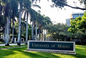 Best and Worst Things About Your First Week at the University of Miami