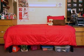 16 Types of Roommates You May Get at Boston University
