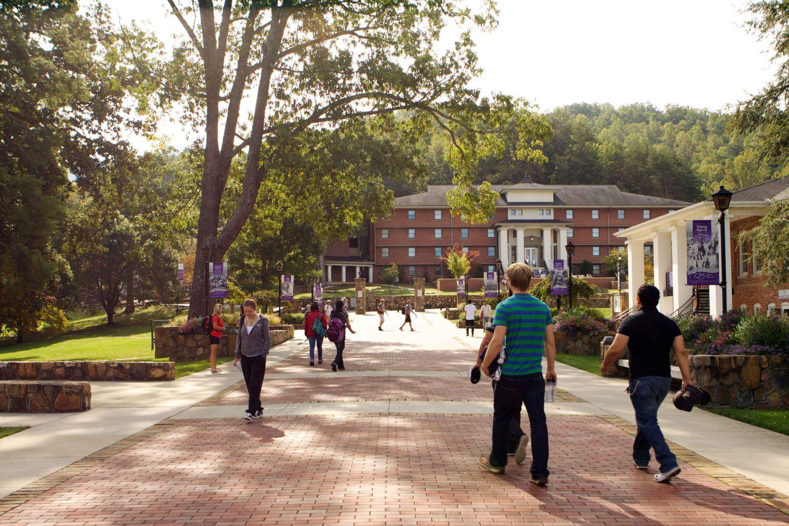 Campus 31