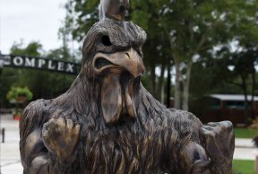 30 Tips to Survive 1st Year at Coastal Carolina University