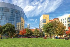 10 of the Coolest Classes at Northeastern University