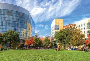 The 10 Most Popular Majors at Northeastern University