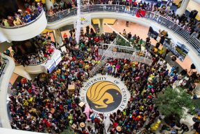 30 Tips to Survive 1st Year at UCF