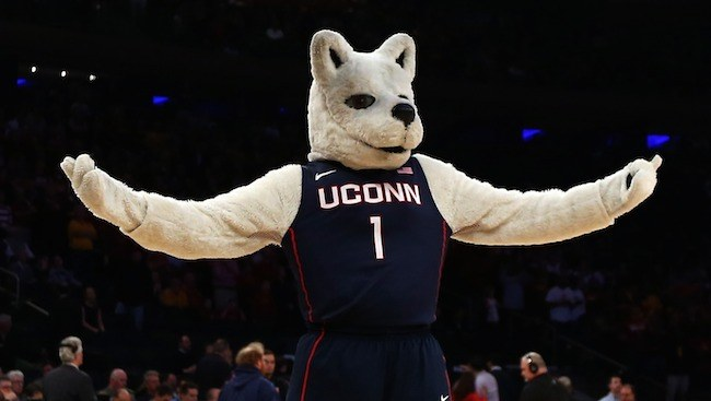 Xuconn husky connecticut mascot getty elsa.jpg.pagespeed.ic .pg1 kec0at
