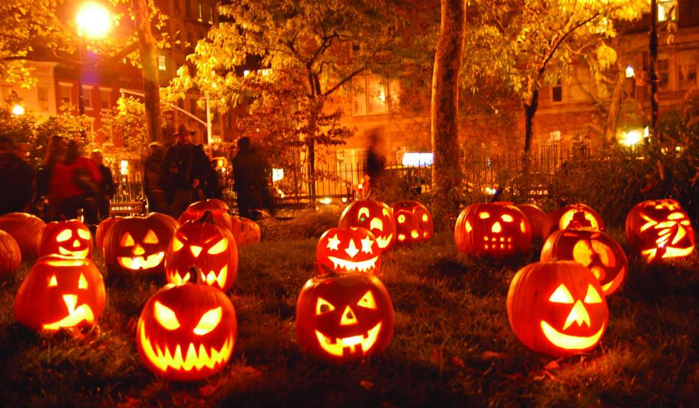 Pumpkins 985x575