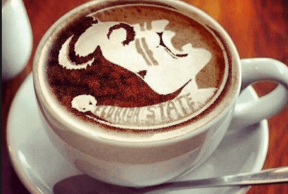 5 Addicting Coffee Shops around FSU