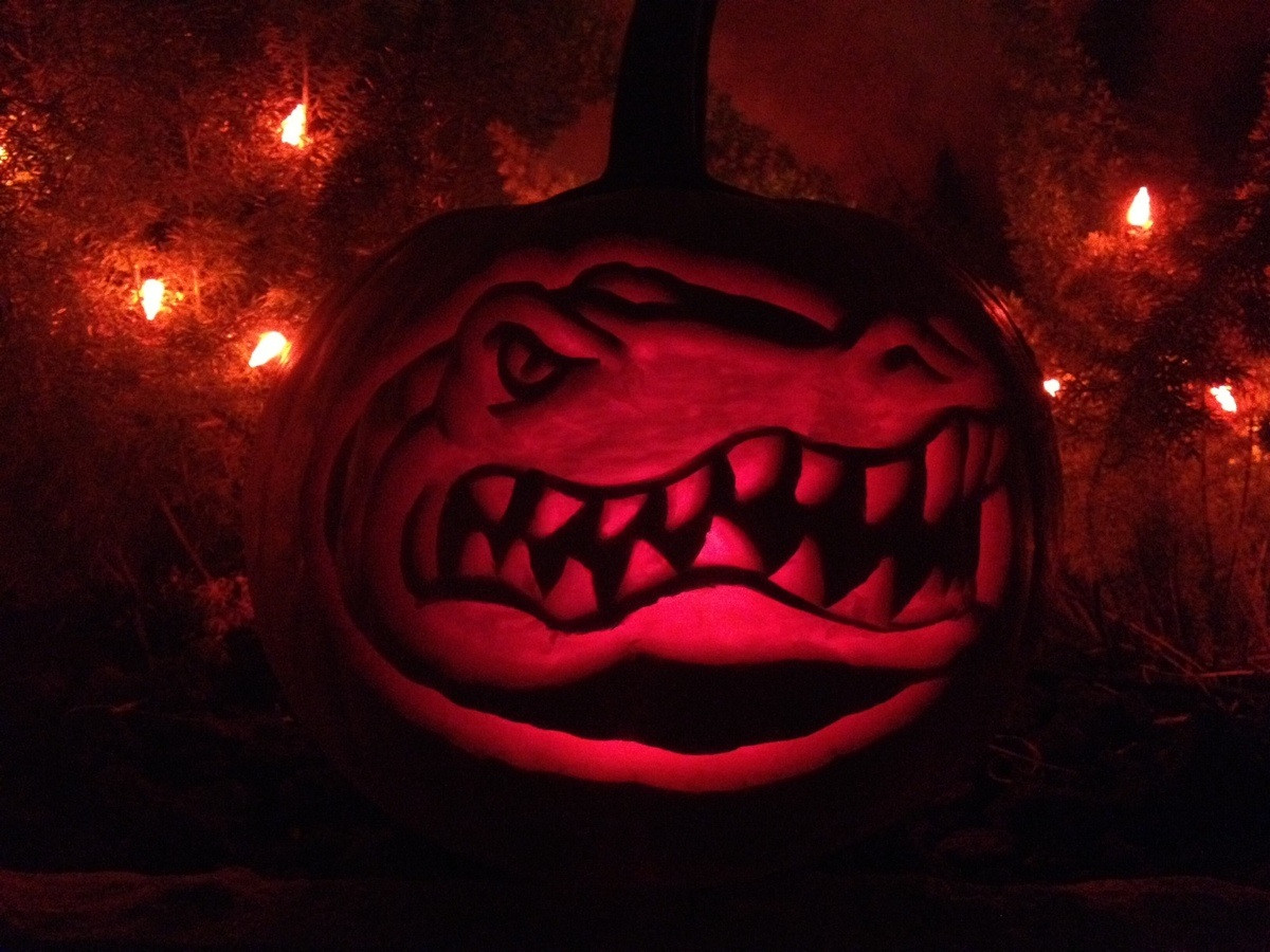 5 best halloween events near university of florida - oneclass blog