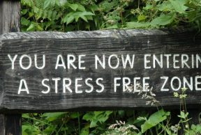 Top 5 Tips to Being Stress-Free