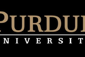 Best Ways to Get Involved with Undergraduate Research at Purdue