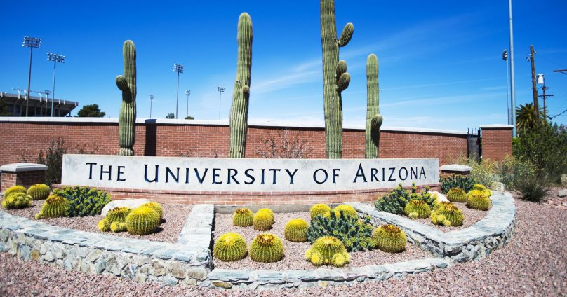 How to Survive MIS111 at the University of Arizona