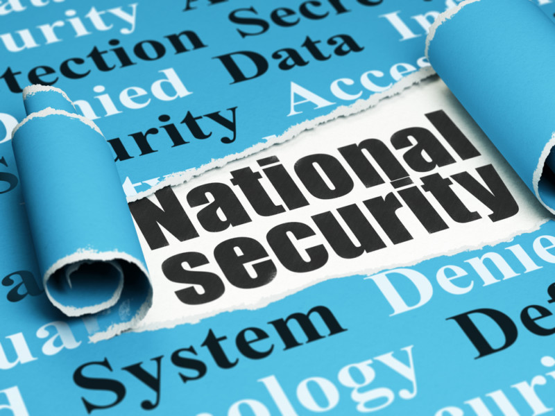 National security copyright maksim kabakou