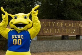 Top 5 Study Spots at UC Santa Cruz