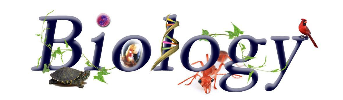 Biologywebbanner