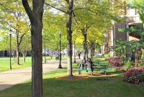 Tips to Make the Most of your First Year at DePaul