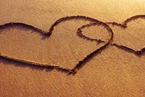 5 Reasons To Love CSUN