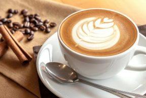 8 Best Cafés near the University of Toronto