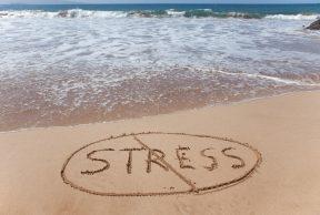 4 Ways to Relieve Stress at University of Toledo