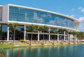 5 Reasons Why You Should Attend The University Of Miami
