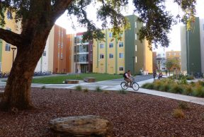 Pros and Cons of UC Davis's Honors Program