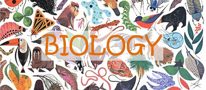 Biology banner