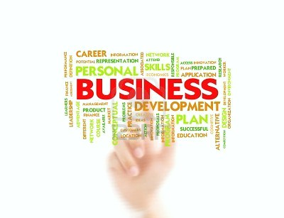 A word cluster of business development.