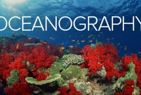 Top Oceanography Courses to Take at San Diego State