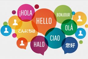 Top 5 Language Courses You Should Take at Boise State