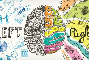 Top 5 Psychology Classes at Boise State