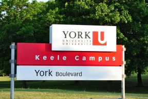 5 Things to Do on the Weekends at York U