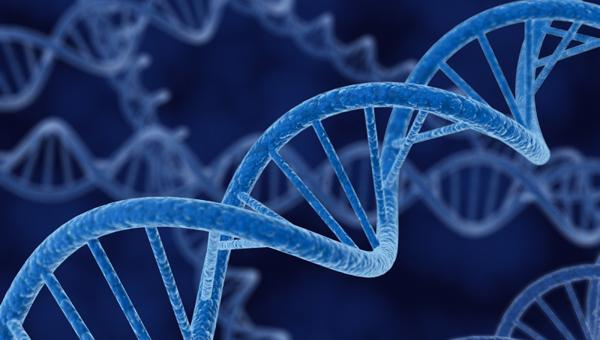 Course genetics