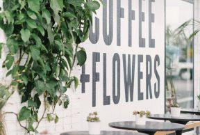 5 Best Coffee Shops Near University of San Diego