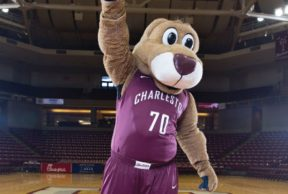 How to Celebrate March Madness at CofC