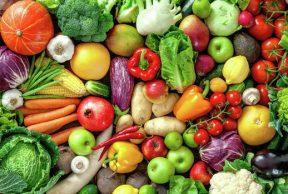 5 Nutrition Courses at SDSU