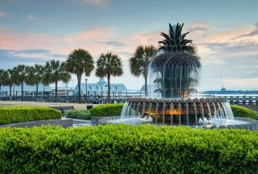 5 Best Things to Do Around College of Charleston