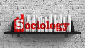 Towson University SOCI 101 - Introduction to Sociology
