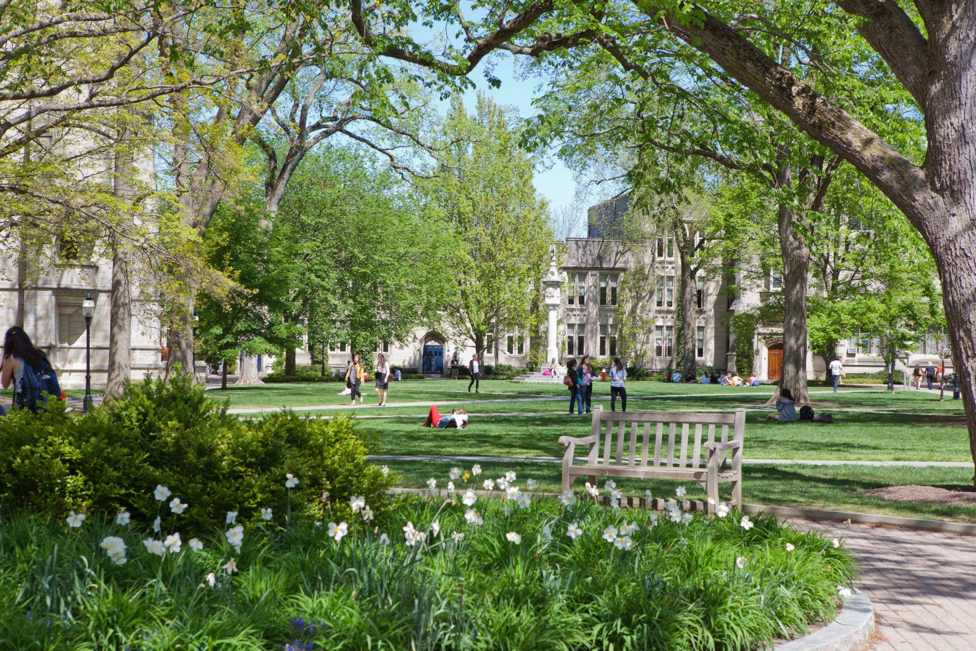 10 of the Easiest Classes at Princeton University